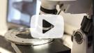 HDR digital microscope video - Kaydon Bearings